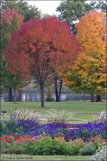 Noelridge Park landscape